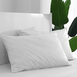Duck Feather Standard & Euro Pillow 2 Pack