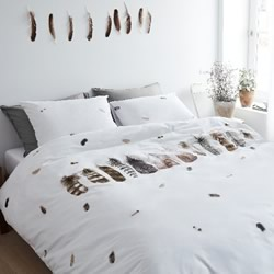 Wild Feathers White Quilt Cover Set