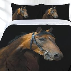 Dark Rider Quilt Cover Set