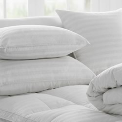 Deluxe Feather Down Euro & Pillows